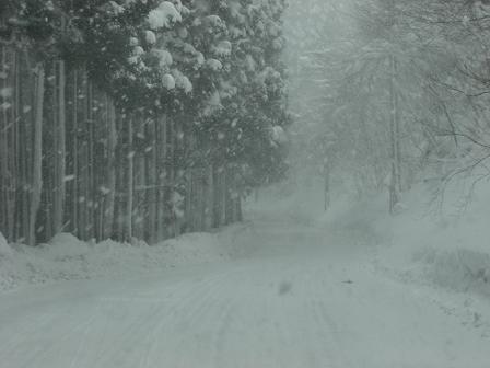 冬山2008 020