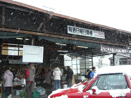 大原2008 013