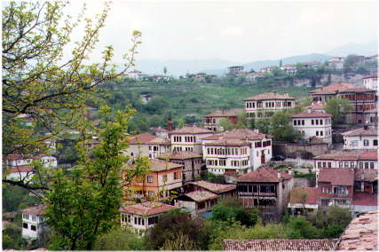 safran1.jpg