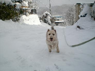 雪あそび 007