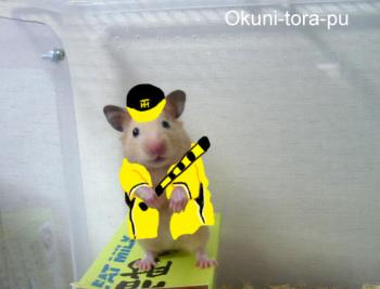 絵日記9・16ハム子応援中