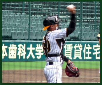 絵日記7・9矢野さん2軍3