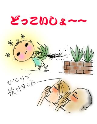 0720_4_.jpg