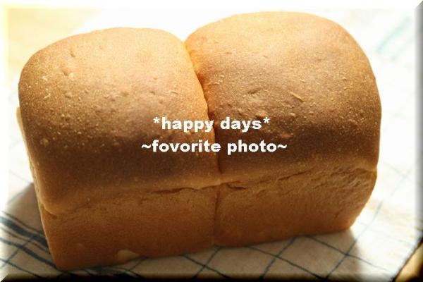 天然ホシノ酵母のミルク食パン_1