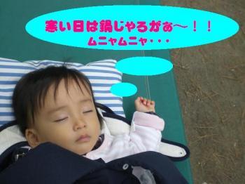 CIMG9469a.jpg