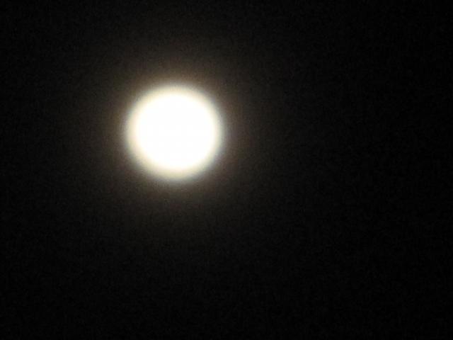 綺麗なお月さん