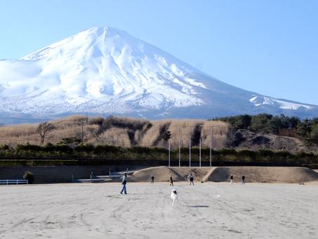 日本の犬なら一度は富士へー