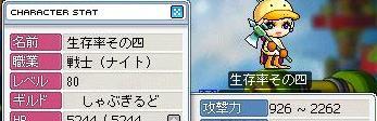 4_80_1.jpg