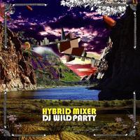 HYBRID MIXER