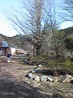 20090212165012