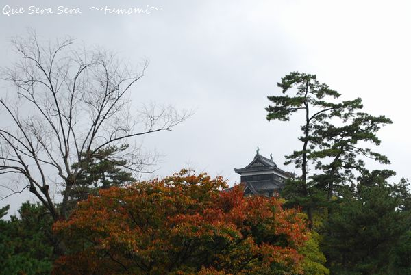 お堀から望む 「松江城」