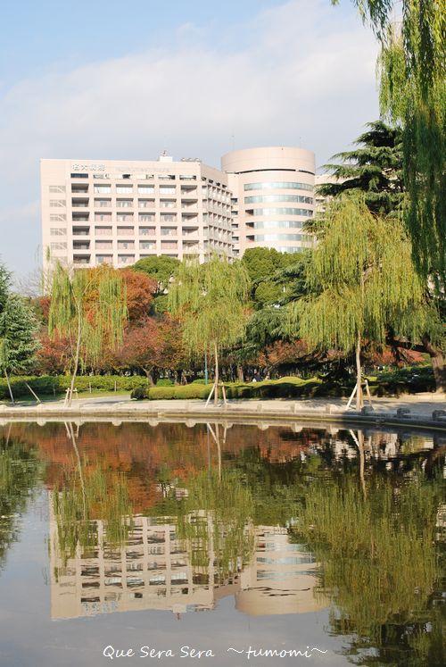 鶴舞公園より臨む 名大病院