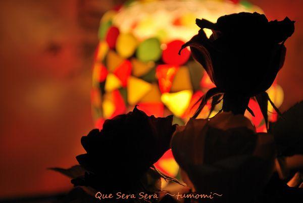 ランプとバラ