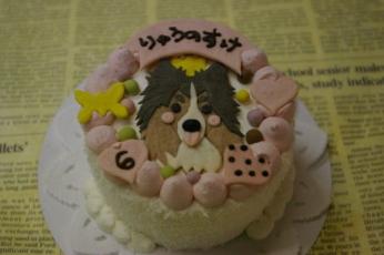 龍誕ケーキ