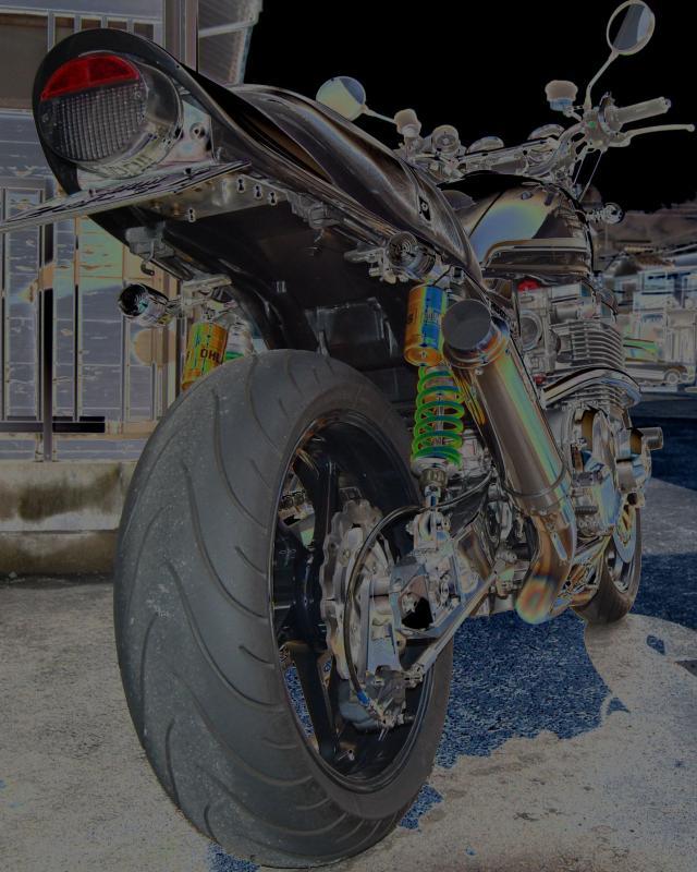 DSC_00481_convert_20090205162843.jpg