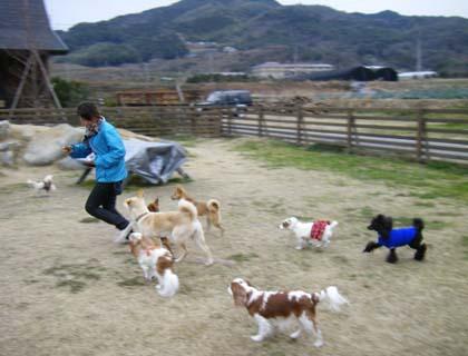 oyatsu2_20090122185638.jpg
