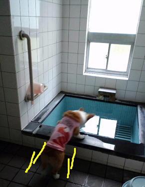 吾妻園の部屋付き風呂