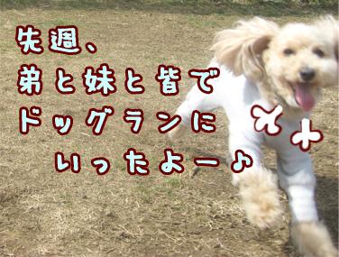 IMG_445605.jpg