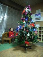 園の大きなツリー2