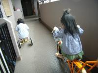 自転車対三輪車