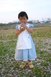 DSC04897sakura11.jpg