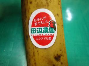 「エクアドル、田辺農園のバナナ」2