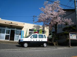 2009、油木交番の桜7