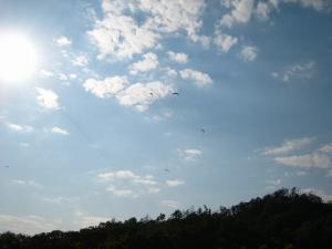 R182号線・高山、「ハンググライダー」2