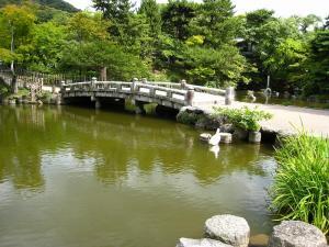 「京都・祇園祭撮影行」2009、15、「円山公園の池・2」