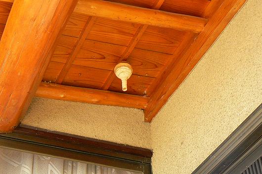 090620 玄関先の巣