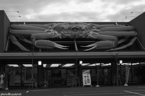 屋根の巨大生物