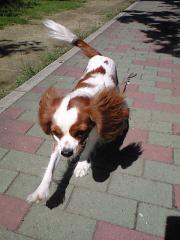 2008-09-28_003.jpg