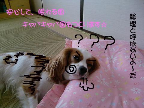20090721_0022222.jpg