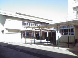 20090066