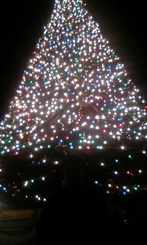 60ホワイトクリスマス