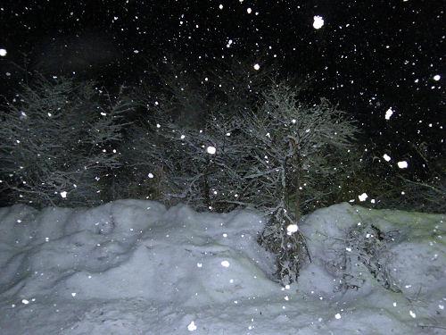 三月三度の雪