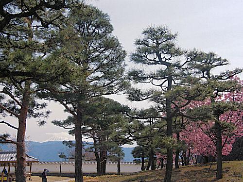 舞鶴城に微かな富士