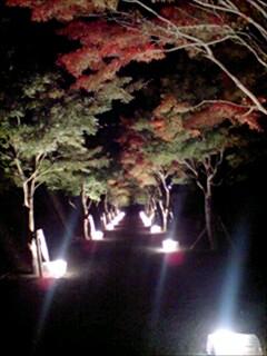 fujiyama008