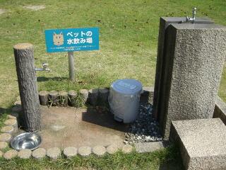 宮島SA 0291
