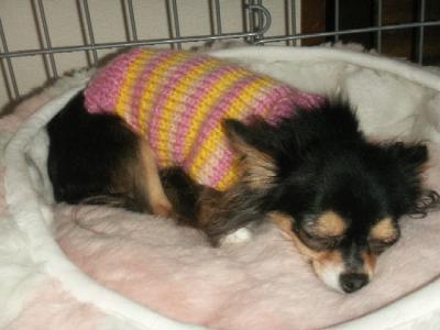 手編のセーター♪