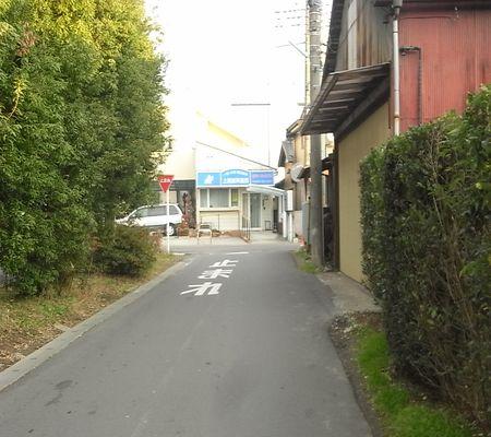washimiya jinjya michi 20081222 01