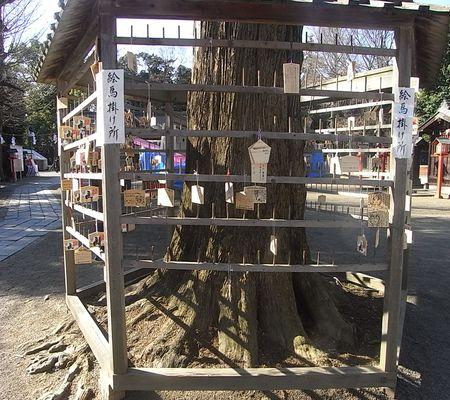 washimiya jinjya ema kake place 001 20081231