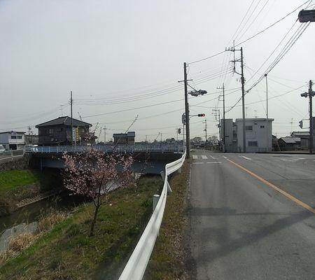 washimiya river 04 20090305