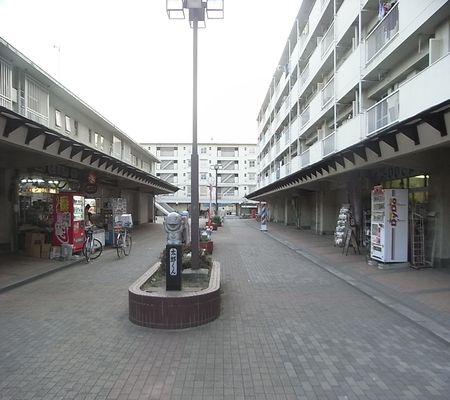 washimiya danchi 20090218 03