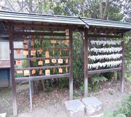 sachi jinjya 20090424 06