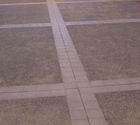 saki  tky  musashino 20090430 09
