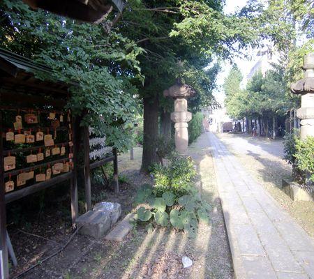 sachimiya jin inside 20090707_R