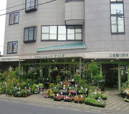 flower shop  narita 20090718 01_R