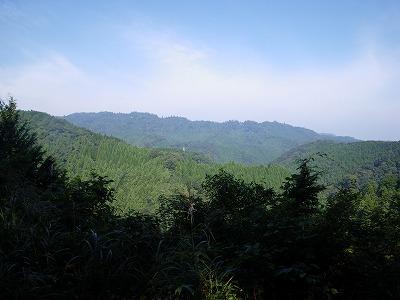 草戸峠から高尾山