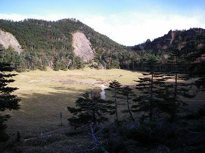 太郎山頂上直下のお花畑